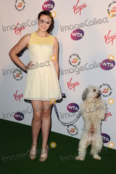 Photo - Ashleigh and Pudsey arriving for the 2012 WTA Pre-Wimbledon Party at the Roof Gardens in Kensington, London. 21/06/2012 Picture by: Steve Vas / Featureflash