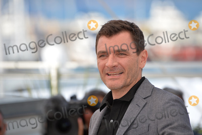 "Alex Brendemuhl Photo - Actor Alex Brendemuhl at the photocall for ""From the Land of the Moon"" (""Mal de Pierres"") at the 69th Festival de Cannes.