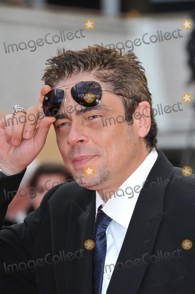 "Benicio Del Toro Photo - Benicio Del Toro at the premiere screening of ""Wall Street: Money Never Sleeps"" at the 63rd Festival de Cannes.May 14, 2010  Cannes, FrancePicture: Paul Smith / Featureflash"