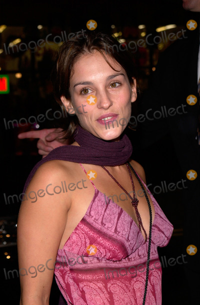 Amy Jo Johnson Photo - Actress AMY JO JOHNSON at the world premiere of Charlie's Angels, at the Mann's Chinese Theatre in Hollywood.22OCT2000.  Paul Smith / Featureflash