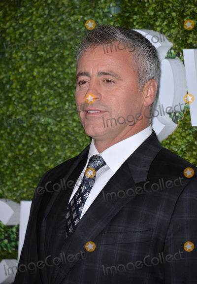 Matt LeBlanc Photo - LOS ANGELES, CA. August 10, 2016: Actor Matt LeBlanc at the CBS & Showtime Annual Summer TCA Party with the Stars at the Pacific Design Centre, West Hollywood. 