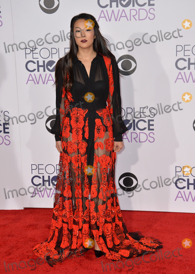Arden Cho Photo - Arden Cho at the People's Choice Awards 2016 at the Microsoft Theatre LA Live. January 6, 2016  Los Angeles, CAPicture: Paul Smith / Featureflash