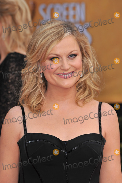 AMY POHLER Photo - Amy Pohler at the 19th Annual Screen Actors Guild Awards at the Shrine Auditorium, Los Angeles.January 27, 2013  Los Angeles, CAPicture: Paul Smith / Featureflash