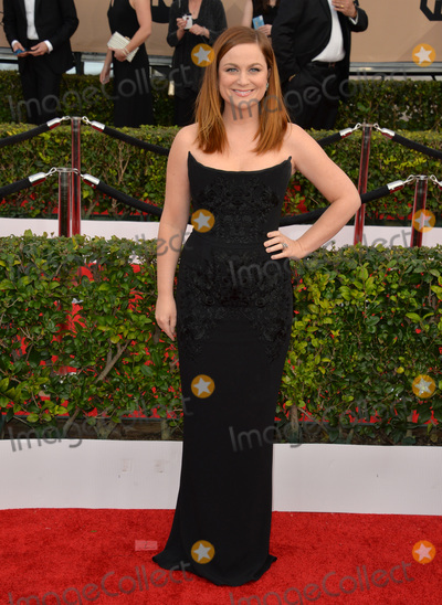Amy Poehler Photo - Actress Amy Poehler at the 22nd Annual Screen Actors Guild Awards at the Shrine Auditorium. 