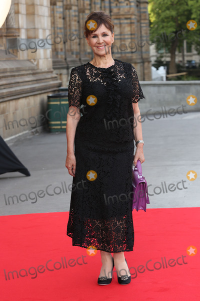 Arlene Phillips, Cinderella, James Smith, Arlene Phillip Photo - Arlene Phillips at the Believe In Magic Cinderella Ball held at the Natural History Museum, London. August 10, 2015  London, UKPicture: James Smith / Featureflash