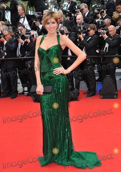 """Aida Yespica Photo - Aida Yespica at the gala premiere of """"Grace of Monaco"""" at the 67th Festival de Cannes.May 14, 2014  Cannes, FrancePicture: Paul Smith / Featureflash"""