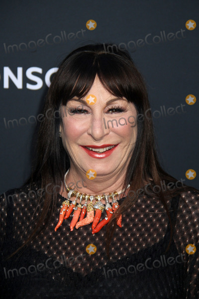 Anjelica Huston, TCL Chinese Theatre, John Wicks Photo - Anjelica Huston 05/15/2019 John Wick: Chapter 3 - Parabellum Premiere held at the TCL Chinese Theatre in Hollywood, CA Photo by Kazuki Hirata / HollywoodNewsWire.co