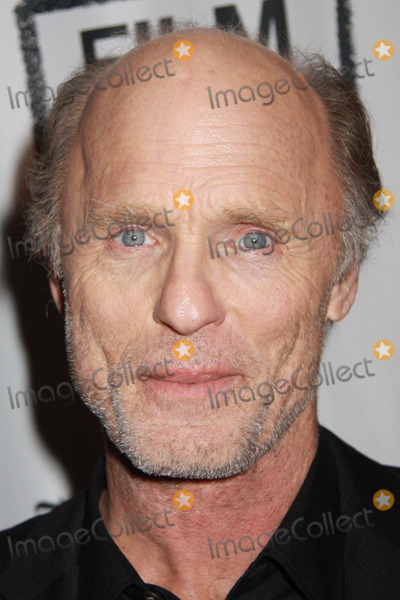 """Ed Harris, The Faces Photo - Ed Harris 03/03/2014 """"The Face of Love"""" Premiere held at LACMA in Los Angeles, CA Photo by Kazuki Hirata / HollywoodNewsWire.net"""