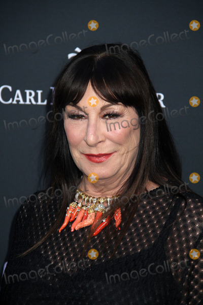 Anjelica Huston, TCL Chinese Theatre, John Wicks Photo - Anjelica Huston 