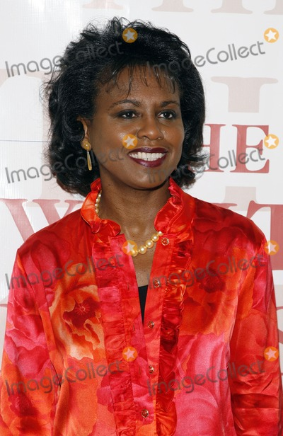 The Unit, Anita Hill, White House, The White Photo - Anita Hill arrives to The White House Projects 2006 Epic Awards at the United Nations on May 2, 2006 in New York City.