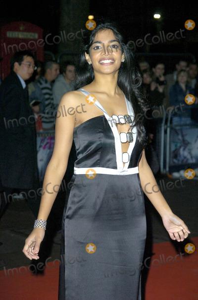 Can Amara karan darjeeling limited congratulate, what