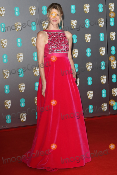 Laura Dern, Albert Hall Photo - London, UK. Laura Dern at BAFTA British Academy Film Awards at the Royal Albert Hall, London 2nd February 2020 . Ref:LMK73-S2826-030220Keith Mayhew/Landmark Media WWW.LMKMEDIA.COM.