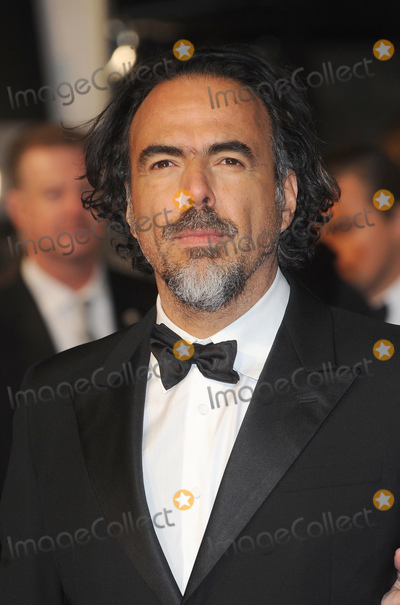 Alejandro G.Inarritu Photo - London.UK. Alejandro G. Inarritu    at the EE British Academy Film Awards (BAFTA) 2016  at the Royal Opera House, Covent Garden, London. 14th February 14th 2016. Ref:LMK200-59989-150216. 