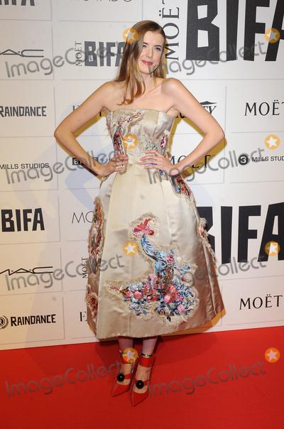 Agynes Deyn Photo - London. UK. Agynes Deyn   at the Moet British Independent Film Awards.  Old Billingsgate Market. 6th December 2015.  Ref: LMK200-59004-071215Landmark Media. WWW.LMKMEDIA.COM