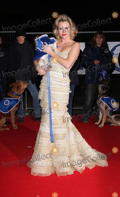 Amanda Holden Photo - London, UK. Amanda Holden at the Collars and Coats Gala Ball to mark the 150th Anniversary of Battersea Dogs and Cats home at Battersea Power Station. 25th November 2010.Keith Mayhew/Landmark Media