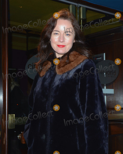 Amanda Drew Photo - London. UK. Amanda Drew   at the Private Lives screening at the Cineworld Haymarket. 27th January 2014. Ref:LMK392-46489-280114 .Vivienne Vincent/Landmark Media. WWW.LMKMEDIA.COM.