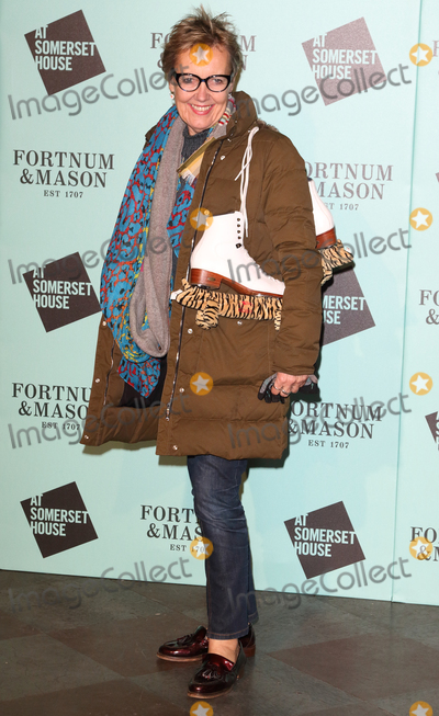 Aggie Mackenzie Photo - London.UK. Aggie Mackenzie  at Skate at Somerset House VIP Launch, London on 17th November 2015.   