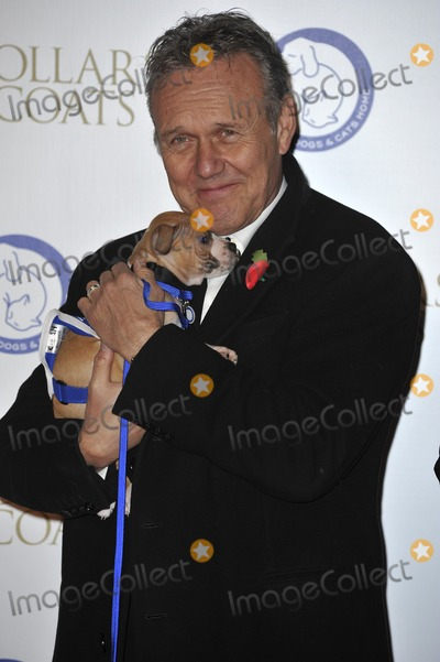 Anthony Stewart Head, Gary Mitchell Photo - London, England. Anthony Stewart Head at the annual Collars and Coats Gala Ball in aid of Battersea Dogs & Cats home at Battersea Evolution on November 7, 2013 in London, England.Ref: LMK386-45869-081113Gary Mitchell/Landmark Media. WWW.LMKMEDIA.COM.