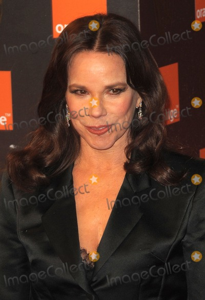 Barbara Hershey, Covent Garden Photo - London, UK. Barbara Hershey  at the Orange British Academy Film Awards held at the Royal Opera House in Covent Garden. 13 February 2011.