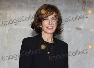 Anne Archer, Jane Fonda Photo - London, UK. US Actress Anne Archer at a photocall for her upcoming starring role in 'The Trial of Jane Fonda' at the Park Theatre, London on April 21st 2016Ref: LMK73-60209-210416Keith Mayhew/Landmark Media. WWW.LMKMEDIA.COM.