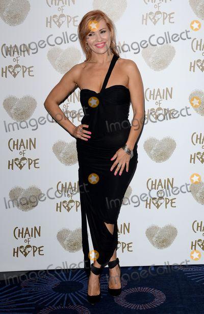 Anya Garnis Photo - London, UK.  220914..Anya Garnis at the Chain of Hope Gala Ball held at the Grosvenor House Hotel, Park Lane.Ref: LMK392-50153-221114Vivienne Vincent/Landmark MediaWWW.LMKMEDIA.COM