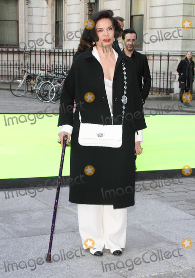 Bianca Jagger Photo - London, UK.  050613.Bianca Jagger at the Royal Academy Summer Exhibition 2013 VIP Preview Party held at the Royal Academy, Piccadilly.5 June 2013.Ref: LMK73-44361-060613Keith Mayhew/Landmark MediaWWW.LMKMEDIA.COM