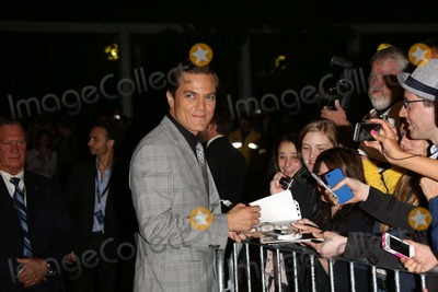 """Michael Shannon, Michael Bublé, Michael Paré Photo - Actor Michael Shannon Arrives at the Premiere of """"Iceman"""" During the Toronto International Film Festival at Princess of Whales Theatre in Toronto, Canada, on 10 September 2012. Photo: Alec Michael Photo by Alec Michael-Globe Photos"""
