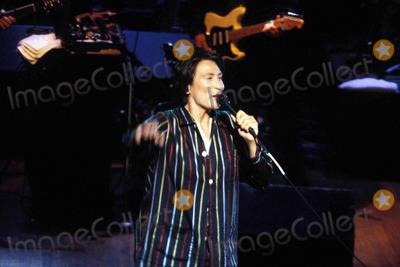 k d lang, k. d. lang, k.d. lang, KD LANG Photo - Beat Goes on Concert to Ben Lifebeat Aids 06-24-1994 K.d. Lang Photo by John Barrett-Globe Photos
