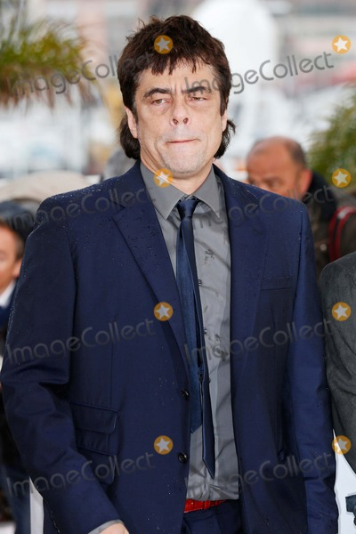 Benicio Del Toro Photo - Benicio Del Toro Jimmy P. (Psychotherapy of a Plains Indian) Photocall 66th Cannes Film Festival Cannes, France May 18, 2013 Roger Harvey
