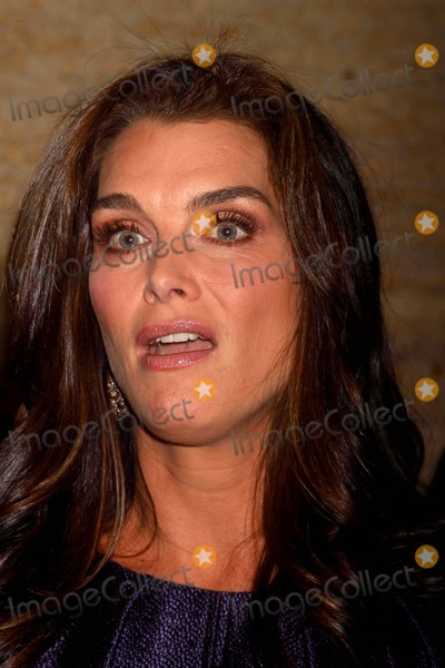 Brooke Shields Photo - Brooke Shields at the Hope For Depression Research Foundation's Honors Brooke Shields at ''10 on the Park'' at Time Warner Center 60 Columbus Circle, NYC. 11-16-09 Photos by John Barrett-Globe Photos,inc2009