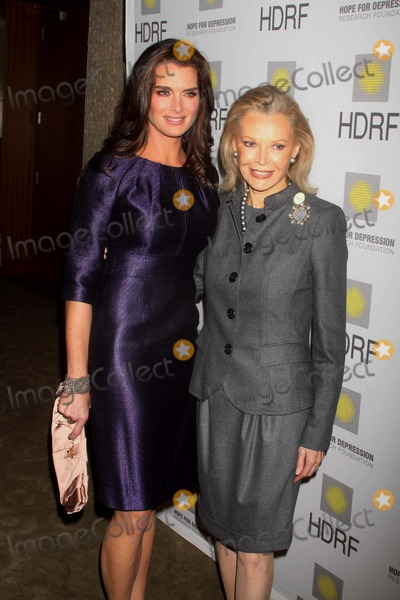 Brooke Shields, AUDREY GRUSS Photo - Audrey Gruss. Brooke Shields at the Hope For Depression Research Foundation's Honors Brooke Shields at ''10 on the Park'' at Time Warner Center 60 Columbus Circle, NYC. 11-16-09 Photos by John Barrett-Globe Photos,inc2009