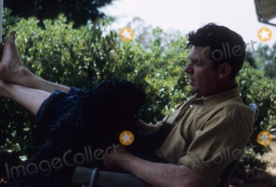 Andy Griffith, Jackée Photo - Andy Griffith 1963 19465 Photo by Jack Stager-Globe Photos, Inc.
