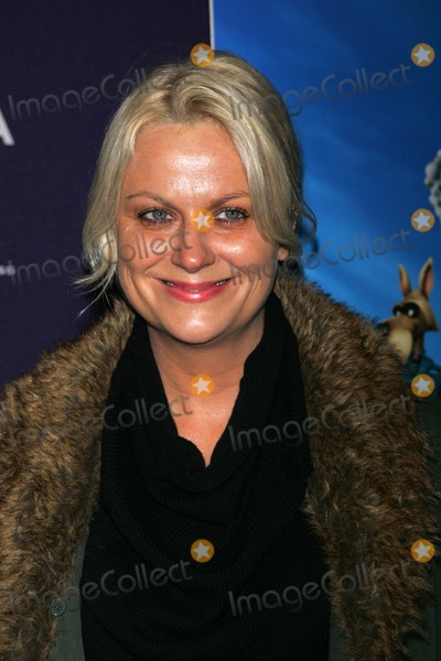 """AMY POHLER Photo - Amy Pohler Arrives For the Tribeca Film Festival Premiere of """"Hoodwinked Too"""" at the Chelsea Clearview Cinemas in New York on April 23, 2011. Photo by Sharon Neetles/Globe Photos, Inc."""