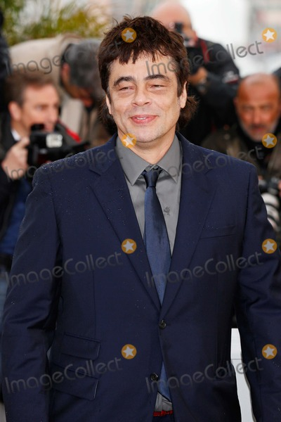 Benicio Del Toro Photo - Benicio Del Toro Jimmy P. (Psychotherapy of a Plains Indian) Photocall 66th Cannes Film Festival Cannes, France May 18, 2013 Roger Harvey