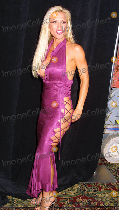 Photo - - Night of Stars - Porn Stars - Marriott Hotel, Woodland Hills, CA - 07/12/2003 - Photo by Clinton H. Wallace / Ipol / Globe Photos Inc. 2003 - Amber Lynn