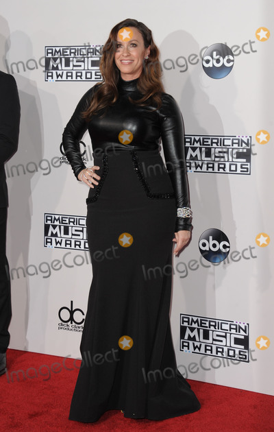 Alanis Morissette Photo - Alanis Morissette attending the 2015 American Music Awards Arrivals Held at the Microsoft Theater on November 22, 2015 in Los Angeles, California on November 22, 2015 Photo by: David Longendyke-Globe Photos Inc.