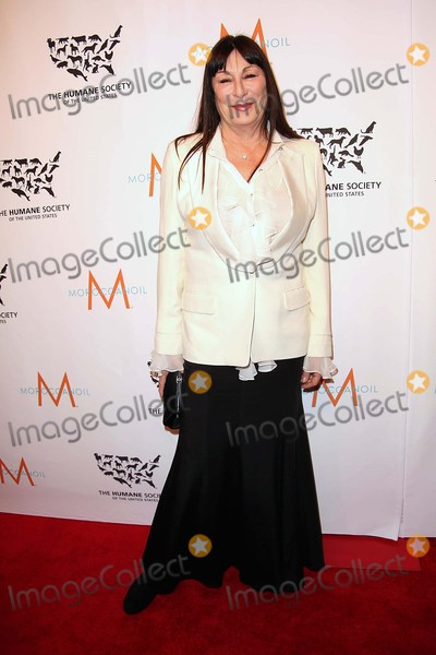 """Anjelica Huston, The Unit, Humane Society Photo - Anjelica Huston attends the Humane Society of the United States Annual """"to the Rescue! New York Benefit"""" Cipriani 42nd Street, NYC November 13, 2015 Photos by Sonia Moskowitz, Globe Photos Inc"""