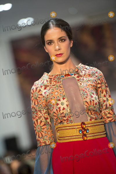 Angela Moreno, The National Photo - SEVILLE, SPAIN, NOV 8: The Angela Moreno designer presents his collection to the-National Fashion Awards, Contest-Western Andalusia in Seville, Spain.